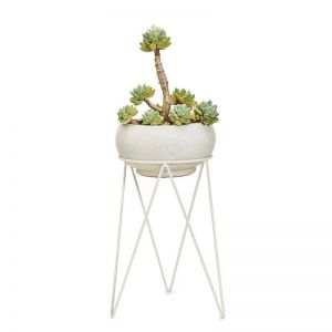 Plant Luxe | Plant Stand | by Bendo