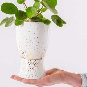 Plant Stand Gold Speckle Small