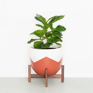 Plant Stand in Walnut | Short | Jemmervale Designs