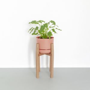 Plant Stand | Medium | Jemmervale Designs