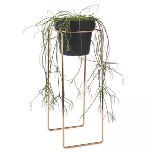 Plant Stand | Tall by Bendo