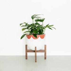 Plant Stands in Walnut | Medium | Jemmervale Designs