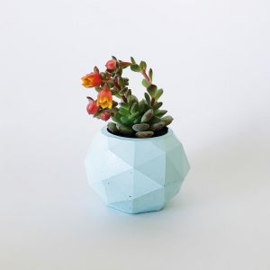 Planter | Clover | Mint | by Coral and Herb
