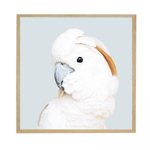 Polly Echo | Framed Art Print