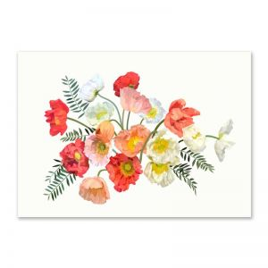 Poppies | Limited Edition Print