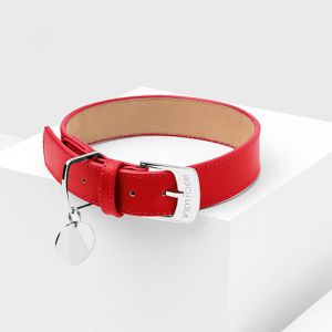 Poppy Leather Dog Collar