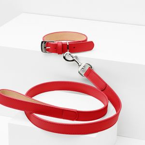 Poppy Leather Dog Lead