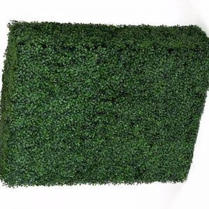 Portable Boxwood Hedge | UV Resistant | 75cm x 100cm