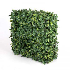 Portable Laurel Hedge | UV Resistant | 75cm x 75cm