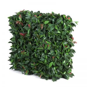 Portable Photinia Hedge   UV Resistant   75cm x 75cm