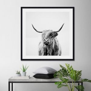Portrait of a Highland Cow by Dorit Fugh | Unframed Art Print