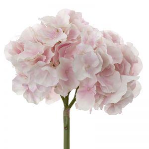 pre - order Hydrangea | Light Pink | 6 Stems