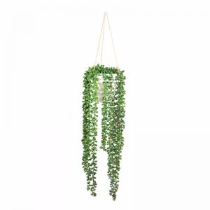 PRE ORDER - Pearls Beads in Pot
