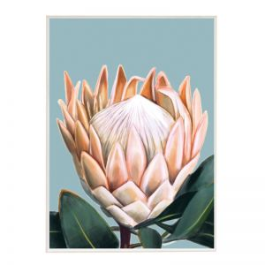Pretty Protea | Boutique Gloss White Frame | Front View