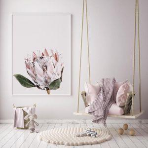 Pretty Protea | Photographic Art Print by Donna Delaney