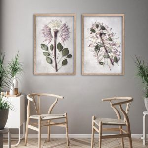 Protea Anatomy | Set of 2 Art prints | Framed or Unframed