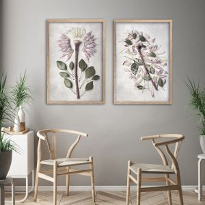 Protea Anatomy | Set of 2 Art prints | Unframed