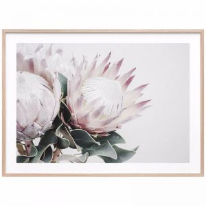 Protea Bouquet | Framed Print | 41 Orchard