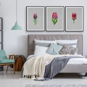 Proteas On Grey Linen | Three Piece Print Set