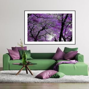 Purple Spring | Framed Print or Canvas | by Artscope