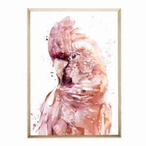 Quinny Bird | Framed Art print
