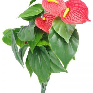 Red Anthurium Bunch   UV Resistant   38cm