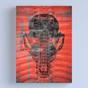 Red Fox Skull | Canvas Print