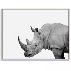 Rhino | Canvas or Print by Artist Lane