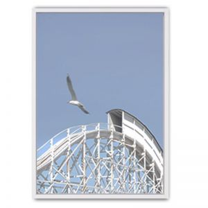 Roller Coaster Framed Canvas Print | White Moose