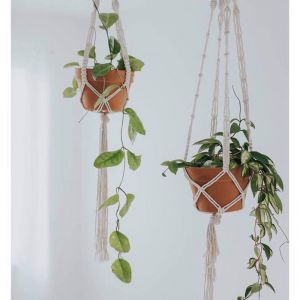 Rope Macrame Plant Hanger | Stix & Flora