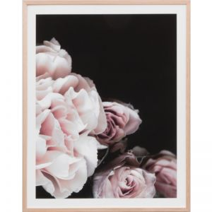 Rose Noir 1 | Framed Print