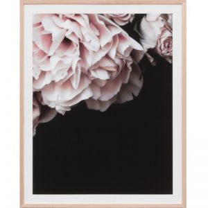 Rose Noir 2 | Framed Print