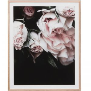 Rose Noir 4 | Framed Print