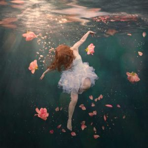 Rosewater by Hayley Roberts | Limited Edition Fine Art Print | 55.88 x 55.88cm | Art Lovers Australi