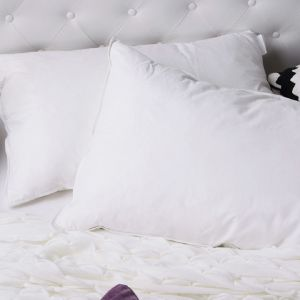 Royal Comfort Ultra Plush 1000GSM Goose Feather and Down Pillows | Twin Pack