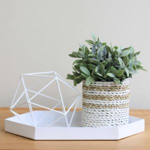 S/2 White Iron Pentagon Tray by SATARA