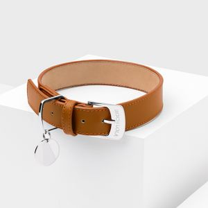 Saddle Leather Dog Collar