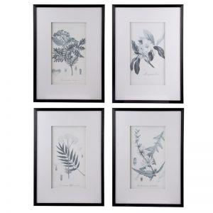 Set of 4 Flora & Fauna Framed Prints