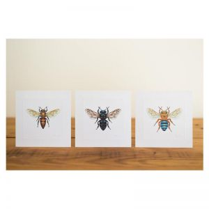 Set of 8 Bees of Australia Miniature Prints