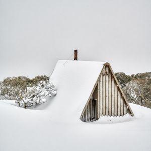 Sheltered | Canvas Print by Scott Leggo