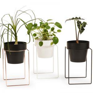 Shrub Plant Stand Mini