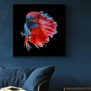Siamese Swimmer 2 | Stretched Canvas | Printed Panel