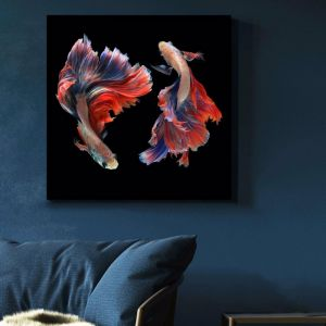Siamese Swimmer 3 | Stretched Canvas | Printed Panel