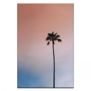 Single Palm | Prints and Canvas | Photographers Lane