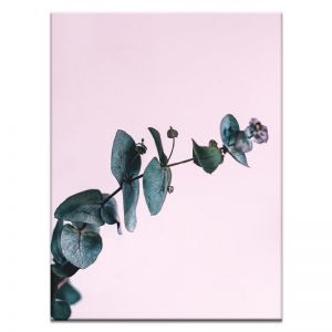 Single Stem | Prints and Canvas by Photographers Lane