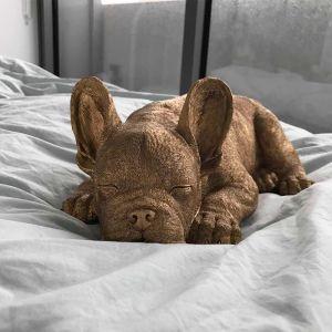 Sleeping Frenchie | Gold