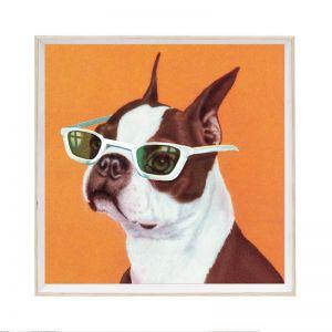 Smart Frenchie | Framed Art Print