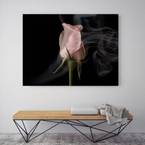 Smoking Hot | Canvas Art