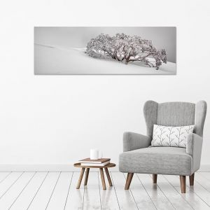 Snow Solitude | Scott Leggo | Canvas Print