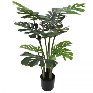 Split Philodendron Split Leaf | 120cm